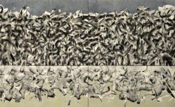 Charcoal Paintings – Λέων Μιχαήλ Έκθεση στην Ελληνοαμερικανική Ένωση