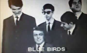 Blue Birds: Ένα garage συγκρότημα στη δεκαετία του 60
