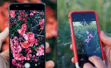 Tο «Shazam» του φυσικού κόσμου: Εφαρμογή αναγνωρίζει λουλούδια, φυτά και ζώα
