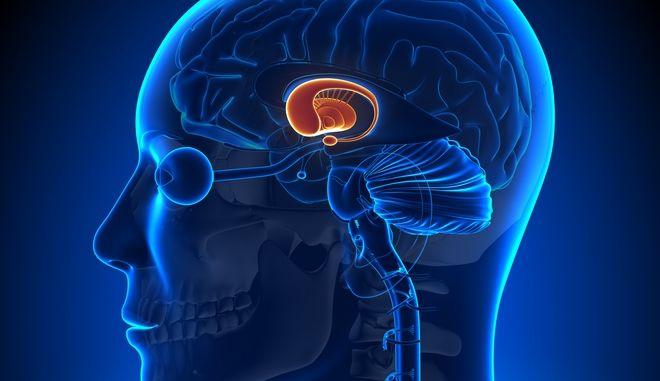 Καταρρέει ο μύθος για την αδρεναλίνη σύμφωνα με έρευνα