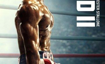 «Κριντ II»: Το μεγάλο blockbuster sequel με τους Σιλβέστερ Σταλόνε και Μαίκλ Μπ. Τζόρνταν έρχεται αποκλειστικά στη Nova!