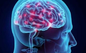Πως εκπαιδεύεται ο εγκέφαλος μέσω της τεχνολογίας
