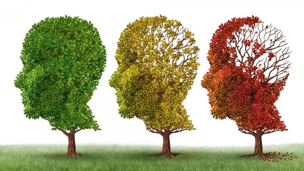 ΕΡΤ: Αφιέρωμα στην Παγκόσμια Ημέρα Νόσου Αλτσχάιμερ