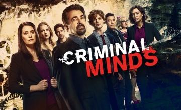 Ο 14ος κύκλος της σειράς «Criminal Minds» στο Open