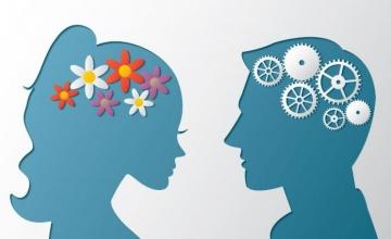 Άνδρες vs Γυναίκες: Τελικά έχουν διαφορετικό… εγκέφαλο;