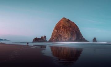 Carl Rogers, «Καθένας μας είναι από μόνος του ένα νησί..»